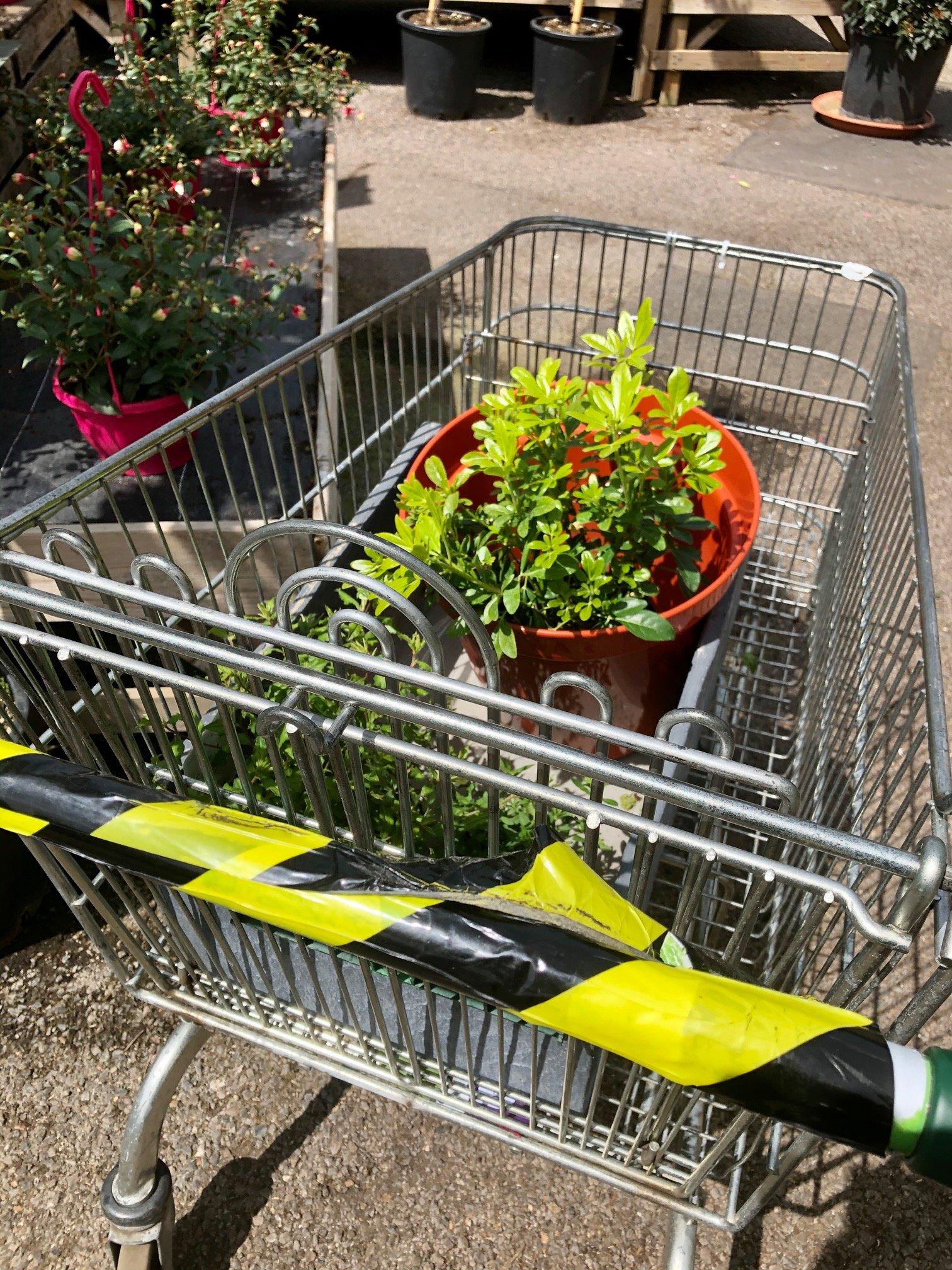 Using radios in a COVID-Secure garden centre